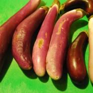 Spicy Glazed Eggplant